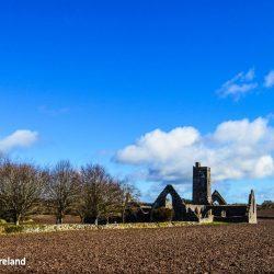Kilcrea Cork Friary Franciscan Medieval Ireland Ruin Religious History Tower Gothic Cloister Church Catholic