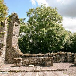 Castlelyons Carmelite Architecture Co. Cork